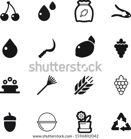 nature vector icon set such as: botanical, freshness, bio, line, heat, sickle, grow, botanic, flora, fence, nutcracker, drawing, fiber, citrus, growing, walnut, clinic, delicious, drip, farming, stem