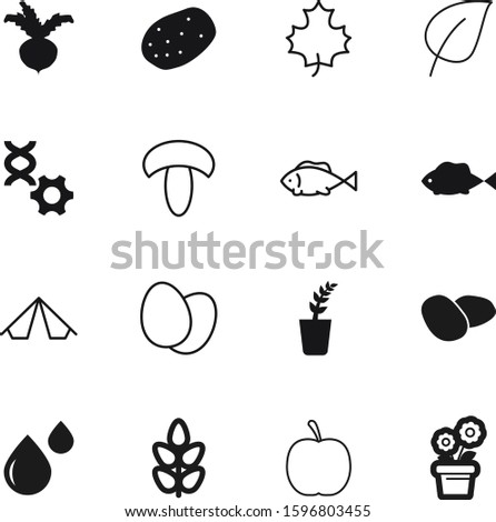 nature vector icon set such as: easter, education, dna, drawing, delicious, travel, botanic, botanical, bright, droplet, shell, botany, mushrooms, sugar, chicken, knowledge, textile, cereals, beet