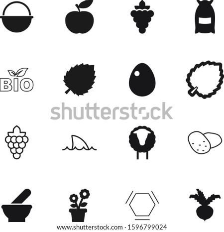 nature vector icon set such as: fitr, fuel, ecology, emblem, mubarak, metal, growing, easter, flora, structure, botanic, botanical, art, care, science, flour, grain, linear, product, model, tourist