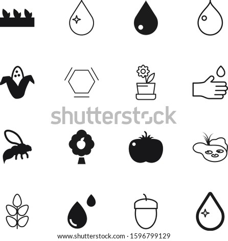 nature vector icon set such as: fly, molecular, peach, acorn, apple, bee, maize, border, bright, palm, fruit, beauty, pond, cereal, flora, medical, healthcare, atom, sweet, vitamin, botany, stem