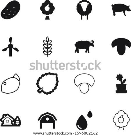 nature vector icon set such as: hut, hangar, house, al, log, chalet, spike, concept, electric, comic, health, autumn, fungus, exterior, lemon, sliced, garden, gardening, farming, eid, botany, orange