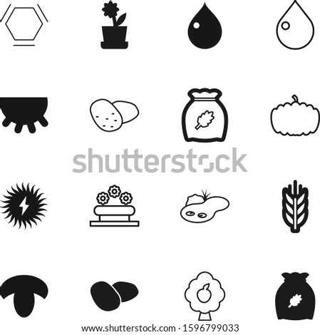 nature vector icon set such as: oat, rye, peach, modern, botanic, alternative, autumn, outline, label, pumpkin, apple, sky, botanical, sun, seed, growing, drawing, pictogram, mammal, sketch, power
