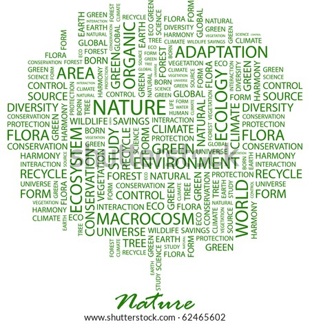 NATURE. Word collage on white background. Illustration with different association terms.