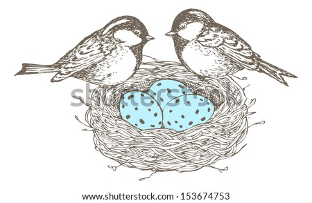 nest with eggs and birds are separate groups all fills and outlines are separate groups