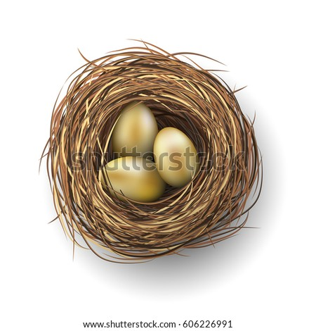 nest with three golden eggs on