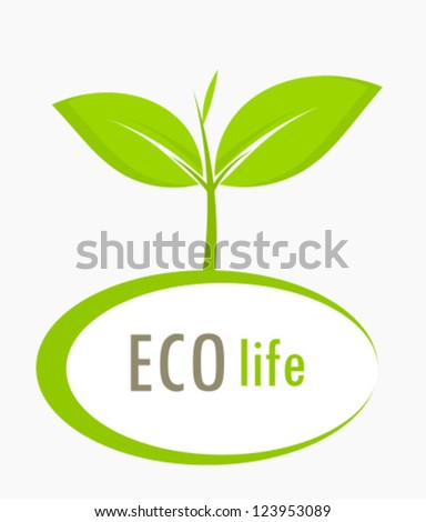 New born growing plant - ecological concept