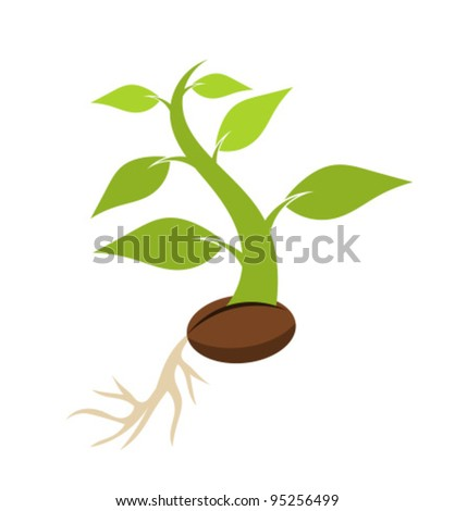 New born plant growing from seed. Vector illustration