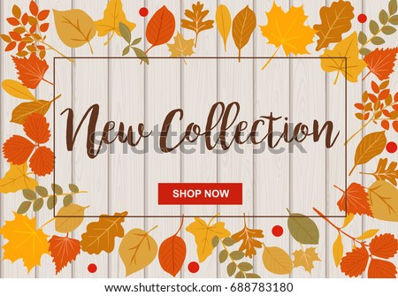 New collection vector illustration with autumn leaves and light wooden background