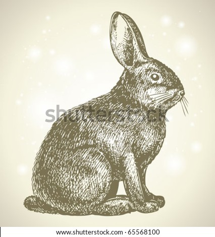 new year bunny beautiful drawing