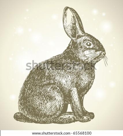 new year bunny beautiful drawing - stock vector