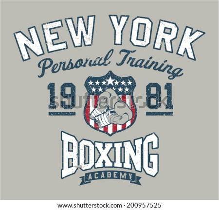 new york boxing academy