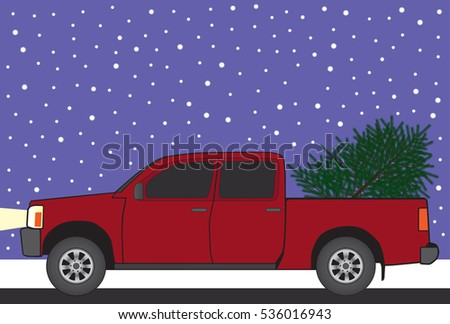 Newly cut Christmas tree is being hauled to it's new destination in the back of a pickup