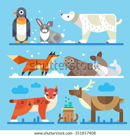 nice north and arctic animals