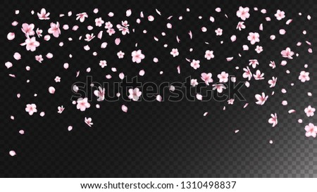 Nice Sakura Blossom Isolated Vector. Feminine Falling 3d Petals Wedding Design. Japanese Beauty Spa Flowers Illustration. Valentine, Mother's Day Tender Nice Sakura Blossom Isolated on Black