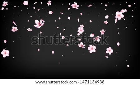 Nice Sakura Blossom Isolated Vector. Feminine Flying 3d Petals Wedding Pattern. Japanese Blurred Flowers Wallpaper. Valentine, Mother's Day Summer Nice Sakura Blossom Isolated on Black