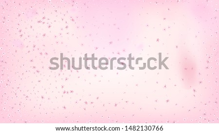 Nice Sakura Blossom Isolated Vector. Feminine Flying 3d Petals Wedding Texture. Japanese Beauty Spa Flowers Illustration. Valentine, Mother's Day Pastel Nice Sakura Blossom Isolated on Rose