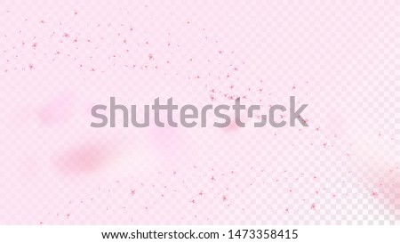 Nice Sakura Blossom Isolated Vector. Magic Showering 3d Petals Wedding Pattern. Japanese Beauty Spa Flowers Illustration. Valentine, Mother's Day Realistic Nice Sakura Blossom Isolated on Rose