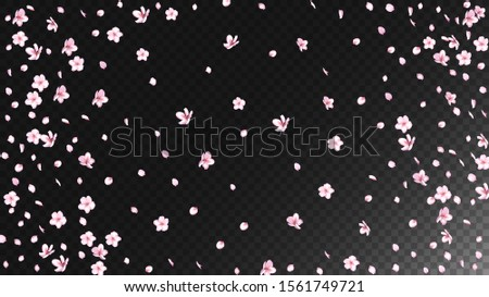 Nice Sakura Blossom Isolated Vector. Magic Showering 3d Petals Wedding Pattern. Japanese Style Flowers Illustration. Valentine, Mother's Day Realistic Nice Sakura Blossom Isolated on Black