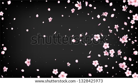 Nice Sakura Blossom Isolated Vector. Pastel Blowing 3d Petals Wedding Design. Japanese Nature Flowers Wallpaper. Valentine, Mother's Day Tender Nice Sakura Blossom Isolated on Black