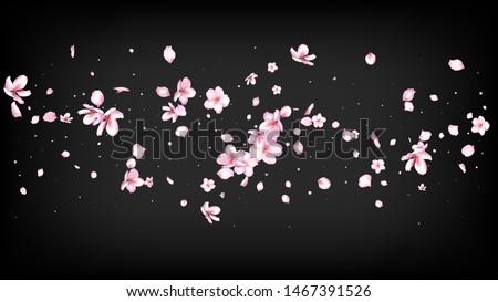 Nice Sakura Blossom Isolated Vector. Pastel Flying 3d Petals Wedding Texture. Japanese Funky Flowers Wallpaper. Valentine, Mother's Day Feminine Nice Sakura Blossom Isolated on Black