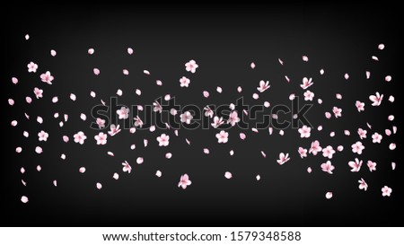 Nice Sakura Blossom Isolated Vector. Realistic Falling 3d Petals Wedding Paper. Japanese Style Flowers Wallpaper. Valentine, Mother's Day Tender Nice Sakura Blossom Isolated on Black