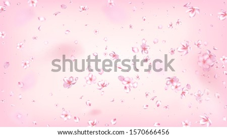Nice Sakura Blossom Isolated Vector. Realistic Flying 3d Petals Wedding Frame. Japanese Blurred Flowers Wallpaper. Valentine, Mother's Day Summer Nice Sakura Blossom Isolated on Rose