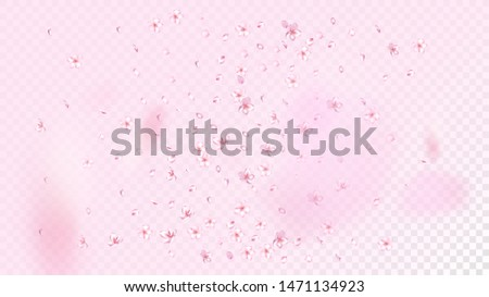 Nice Sakura Blossom Isolated Vector. Spring Falling 3d Petals Wedding Border. Japanese Bokeh Flowers Wallpaper. Valentine, Mother's Day Feminine Nice Sakura Blossom Isolated on Rose