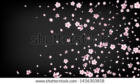 Nice Sakura Blossom Isolated Vector. Spring Showering 3d Petals Wedding Texture. Japanese Blurred Flowers Illustration. Valentine, Mother's Day Magic Nice Sakura Blossom Isolated on Black