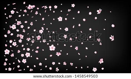 Nice Sakura Blossom Isolated Vector. Summer Falling 3d Petals Wedding Border. Japanese Gradient Flowers Illustration. Valentine, Mother's Day Beautiful Nice Sakura Blossom Isolated on Black