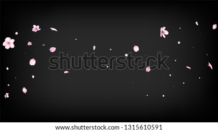 Nice Sakura Blossom Isolated Vector. Summer Falling 3d Petals Wedding Design. Japanese Style Flowers Illustration. Valentine, Mother's Day Tender Nice Sakura Blossom Isolated on Black
