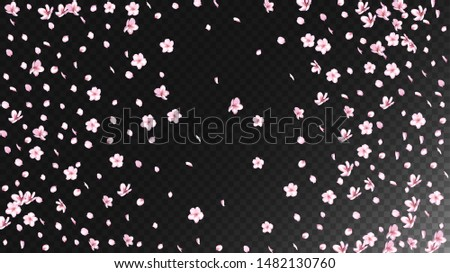 Nice Sakura Blossom Isolated Vector. Summer Flying 3d Petals Wedding Border. Japanese Style Flowers Wallpaper. Valentine, Mother's Day Tender Nice Sakura Blossom Isolated on Black
