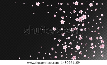 Nice Sakura Blossom Isolated Vector. Tender Blowing 3d Petals Wedding Texture. Japanese Funky Flowers Illustration. Valentine, Mother's Day Spring Nice Sakura Blossom Isolated on Black