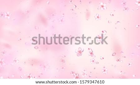 Nice Sakura Blossom Isolated Vector. Tender Falling 3d Petals Wedding Design. Japanese Style Flowers Illustration. Valentine, Mother's Day Magic Nice Sakura Blossom Isolated on Rose