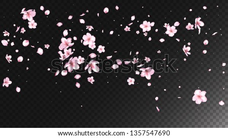 Nice Sakura Blossom Isolated Vector. Tender Flying 3d Petals Wedding Design. Japanese Funky Flowers Wallpaper. Valentine, Mother's Day Watercolor Nice Sakura Blossom Isolated on Black