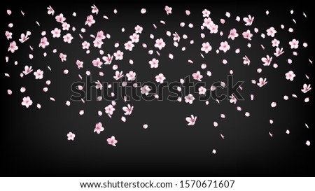 Nice Sakura Blossom Isolated Vector. Watercolor Blowing 3d Petals Wedding Paper. Japanese Oriental Flowers Wallpaper. Valentine, Mother's Day Magic Nice Sakura Blossom Isolated on Black