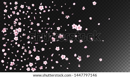 Nice Sakura Blossom Isolated Vector. Watercolor Blowing 3d Petals Wedding Pattern. Japanese Beauty Spa Flowers Illustration. Valentine, Mother's Day Tender Nice Sakura Blossom Isolated on Black