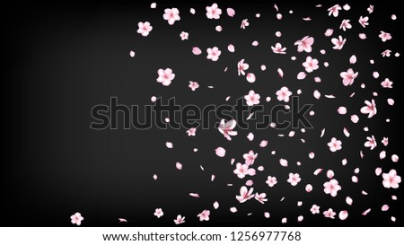 Nice Sakura Blossom Isolated Vector. Watercolor Flying 3d Petals Wedding Border. Japanese Beauty Spa Flowers Illustration. Valentine, Mother's Day Magic Nice Sakura Blossom Isolated on Black