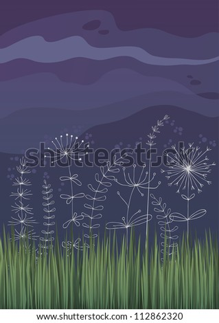 night flowers in haze