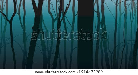 night fog forest nature