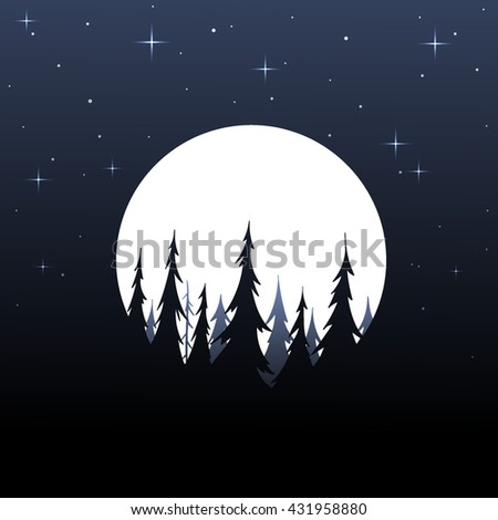 night forest landscape with fir