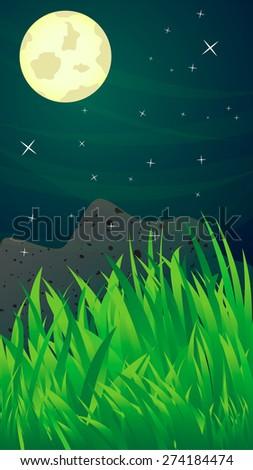 night landscape  grass