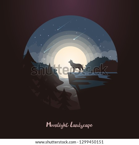 night landscape in forest with