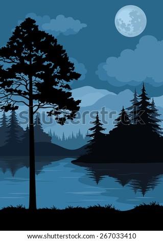 night landscape  mountains lake