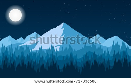 night landscape of the forest
