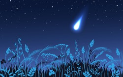 Night landscape with starry sky, silhouettes of meadow plants and falling meteorite. Simple background with flash celestial body. Big asteroid passes close to the earth. Vector flat illustration.