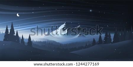 night mountain winter landscape