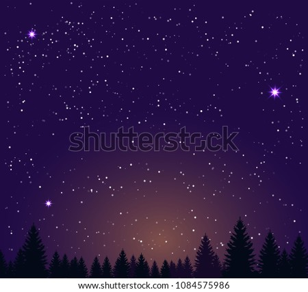 night sky stars and night