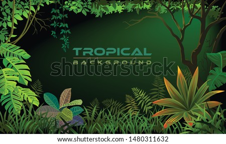 Night tropical forest with green backlight with rich vegetation