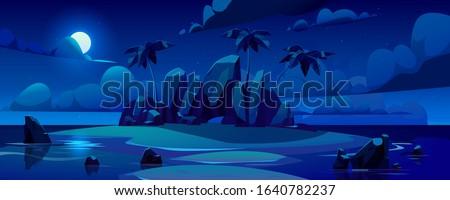 night tropical island in ocean