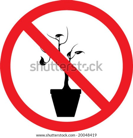 No Plants Sign Photo   SpiderPic Royalty Free Stock Photos Green Garden Spider